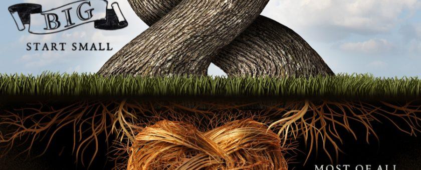 Root Present CTA