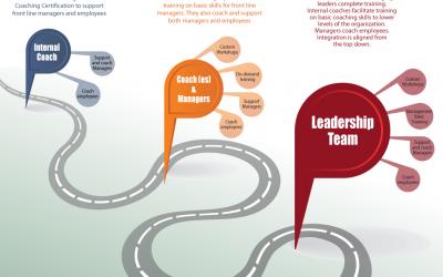 Fundamentals of Organizational Coaching – Online Self Study